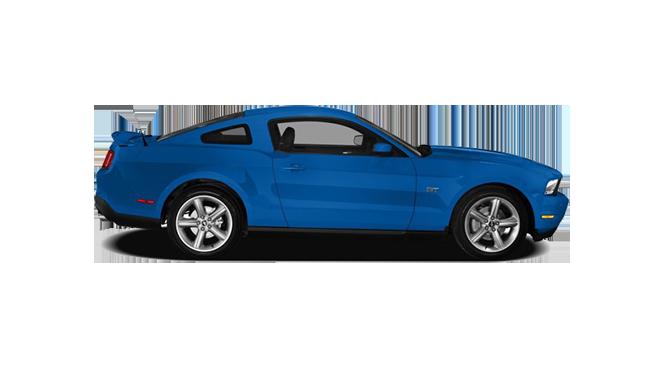 Mustang-Mustang